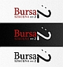 bursa logotype